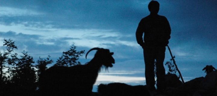 Karakoyunluların Anamas Göç Yolu Belgesel Oluyor
