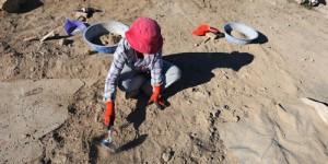 14 Mayıs / Dünya Çiftçiler ve Eczacılar Günü. Fırtına. Arkeoloji Haftası