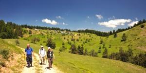 Bolu'da Trekking -7