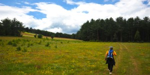 Araç Çayı Boyunca Trekking: 20 km