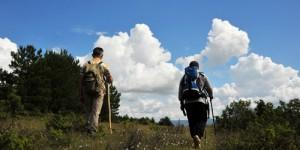 Aşağı Çatak Köyü'nden Araç Çayı'na (Sırçalı Kanyonu): 22