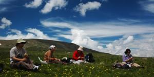 Pehlivanlı'dan Kılıçkaya'ya Çoruh Yolu: 54 km