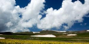 Çiçekler, Mavi Bulutlar ve Yaylalar