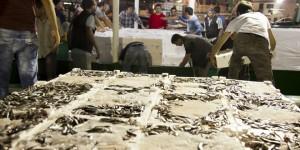 Karadeniz Balıkçılığının Sorunu Yunus Değil!