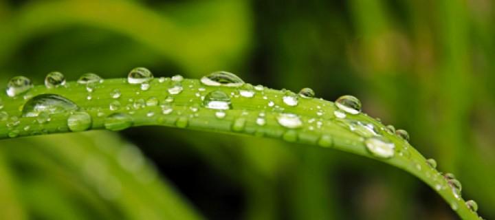 18 Eylül / Güz Yağmurları