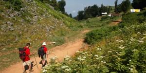 Trekking Turizm Kayaüstü Yaylası Doğa Yürüyüşü