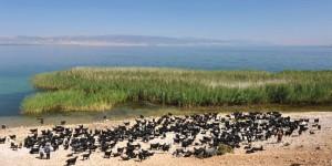 Eğirdir Gölü ve Karakeçiler