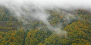 Batı Karadeniz'in Sonbahar Halleri