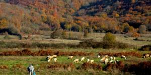 Kandıra'da Sonbahar