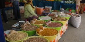 Çankaya'da Tohum Takas Şenliği