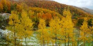 Batı Karadeniz'in Büyüleyici Sonbaharı