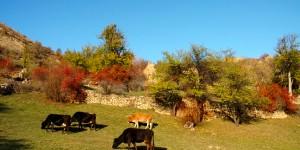 İmera Vadisi'nde Sonbahar