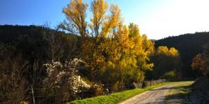İpek Yolu Parkuru: 14 km