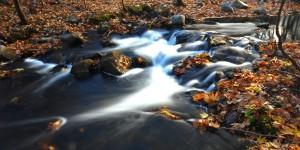 Sadağı Kanyonu'nda Sonbahar -4