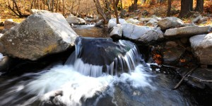 Sadağı Kanyonu'nda Sonbahar -5