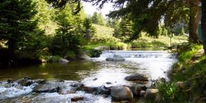 Uludağ'ın Sucul Ekosistemleri