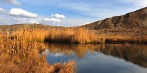 Uzundere Sökün Gölü