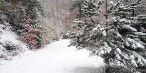 14 Aralık / Fırtına