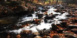 Sadağı Kanyonu'nda Sonbahar -8