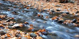 Sadağı Kanyonu'nda Sonbahar -11