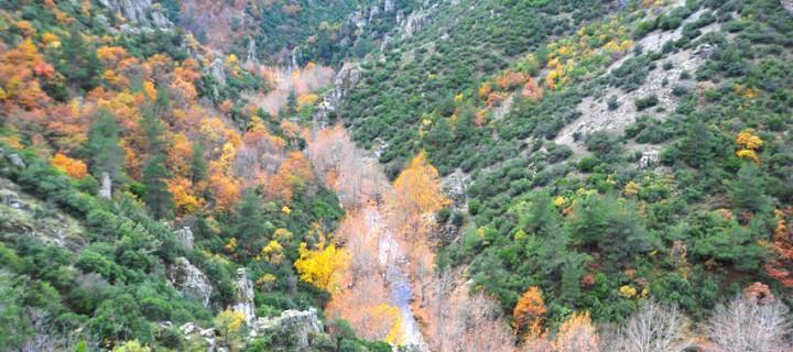 Sadağı Kanyonu'nda Sonbahar -21