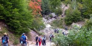 Turizm Rehberi, Alan Kılavuzu, Dağ Mihmandarı ve Uludağ
