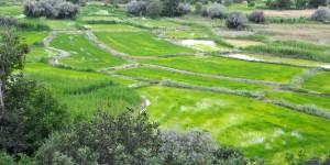 Kıbrıscık Yolu Sapağı – Yuva Köyü – Çeltikdere – Seben Doğal Bisiklet Parkuru: 40 km