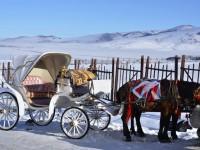 Kars, At Arabaları ve Eski Yılbaşı Kartpostalları