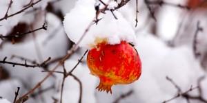 Kar, Kış Misi -30