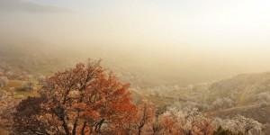 Seben'de Sisli Bir Kış Günü -2