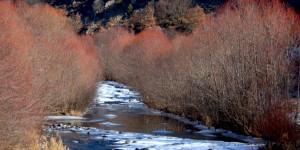 Seben'de Sisli Bir Kış Günü -7