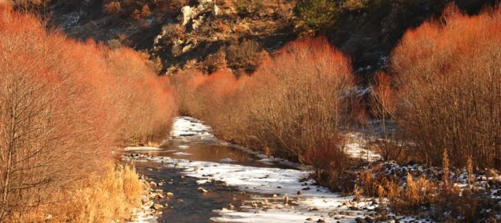 Seben'de Sisli Bir Kış Günü -17