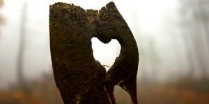 14 Şubat / Fırtına, Sevgililer Günü