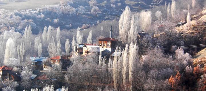 Seben'de Sisli Bir Kış Günü -24