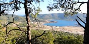 Türkiye'nin Ormanları 'Yatırım' İçin Kesiliyor