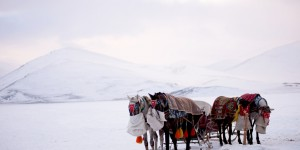 Kar, Kış, Kars -23