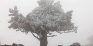11 Mart / Kocakarı Soğuklarının Başlangıcı