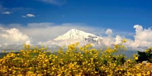 Ağrı Dağı'nda Bahar