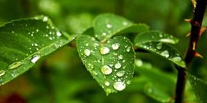 28 Nisan / Fırtına ve Yağmur