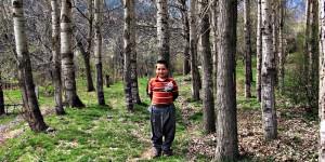 Horoz Köyü -5