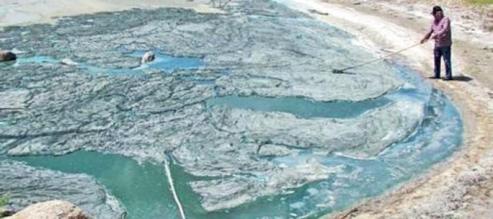 Bafa'ya Kirlilik Bu Yıl Erken Geldi