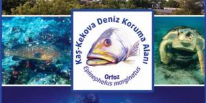 Kaş – Kekova, Türkiye'nin Denizel Yönetim Planına Sahip İlk Korunan Alanı