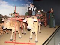 Bursa'nın Göç Tarihi Mercek Altında
