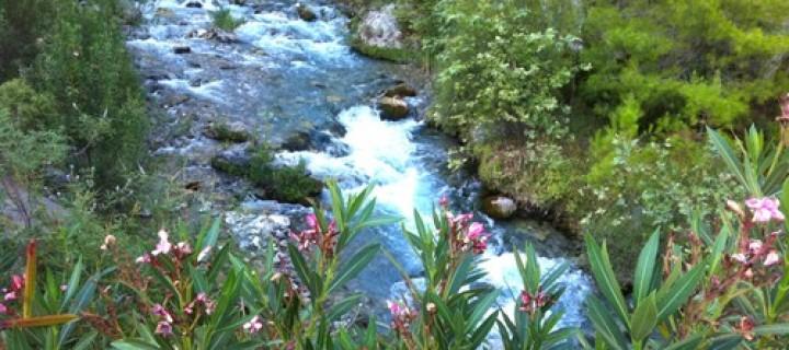 Doğal Sit Alanlarında HES'lerin Önü Açılıyor