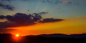 İda'da Güne Veda -57