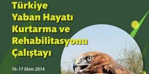 Türkiye Yaban Hayatı Kurtarma ve Rehabilitasyonu Çalıştayı