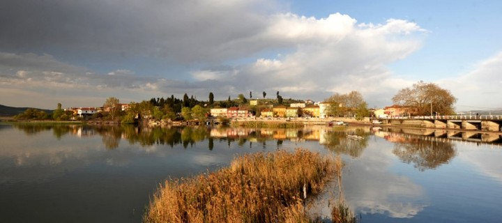 Gölyazı -5