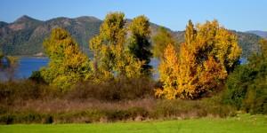 Köyceğiz Gölü Havzası'nda Sonbahar -1