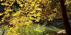 Köyceğiz Gölü Havzası'nda Sonbahar -7