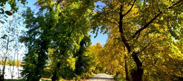 Köyceğiz Gölü Havzası'nda Sonbahar -18